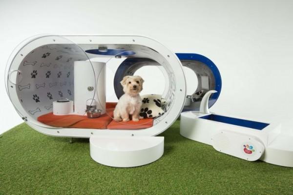 Dream Dog House: собачья конура класса люкс от Samsung