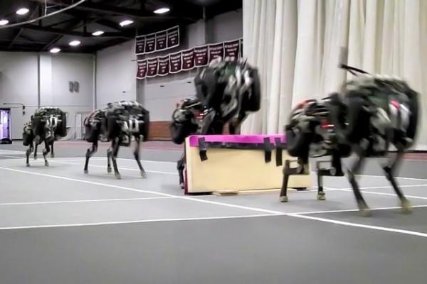 Робот Cheetah научился перепрыгивать препятствия