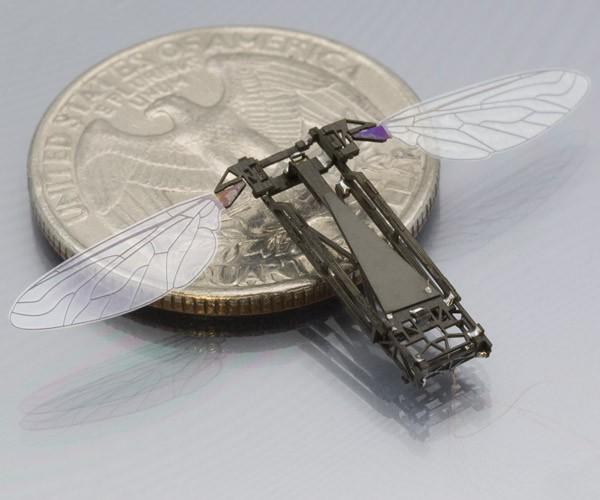 RoboBee: роботы-пчелы из Гарвардского университета