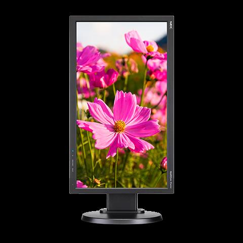 NEC MultiSync E203Wi-BK: монитор с поддержкой портретного режима