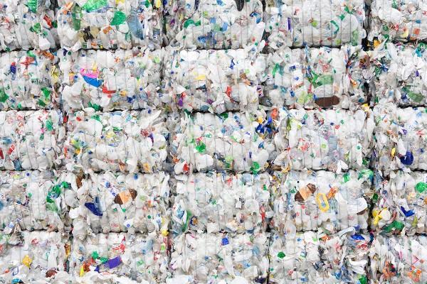 Найдена бактерия, которая питается пластиком ПЭТ