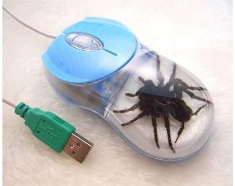 Мышь с пауком Thanko