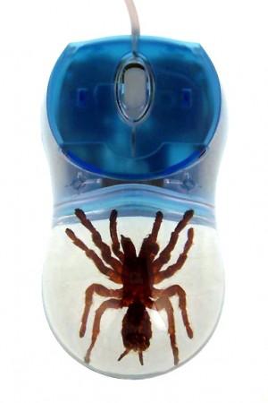 Компьютерная мышь с тарантулом внутри