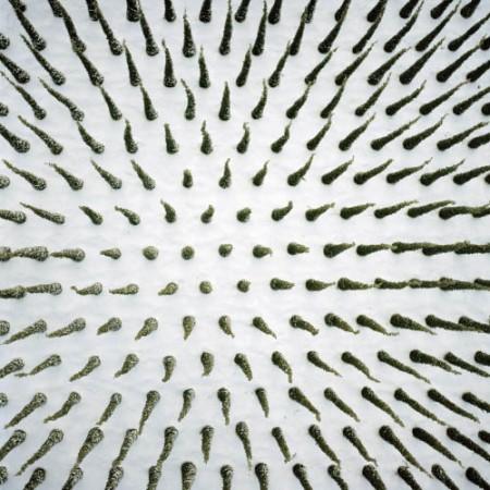 Насколько абстрактным может стать ландшафт?
