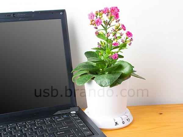 Цветочный горшок с USB-интерфейсом