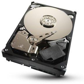 Первый в мире 3,5'' HDD от Seagate с плотностью 1 ТБ на «блин»