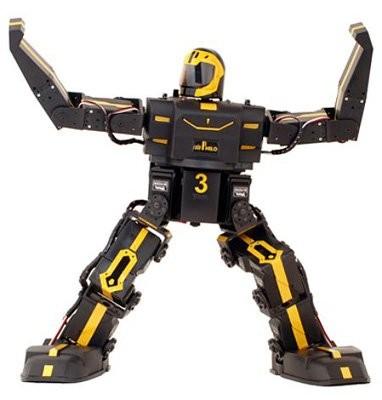 Программируемый гуманоид RoboPhilo в продаже теперь за 500$