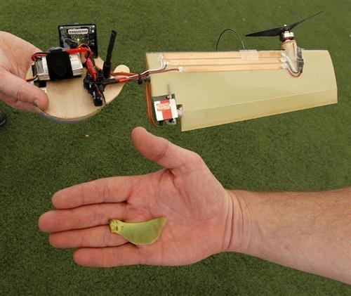 «Кленовый лист» от DARPA и Lockheed Martin