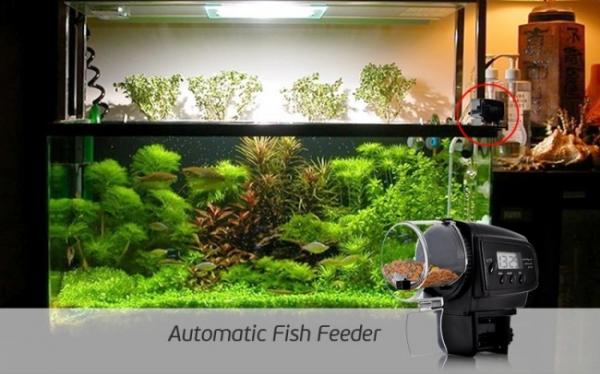 Автоматическая кормушка для аквариумных рыбок