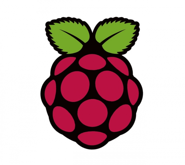 25-долларовый компьютер Raspberry Pi обрел новый логотип