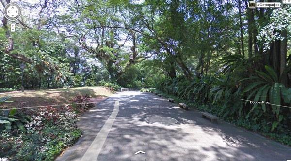 Google обновляет более 400 000 км дорог в Street View
