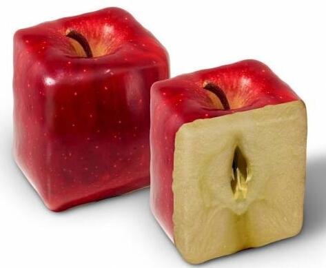 Apple запатентовала прямоугольник