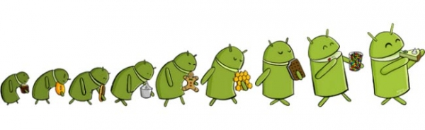 Название Android Key Lime Pie подтверждено работником Google
