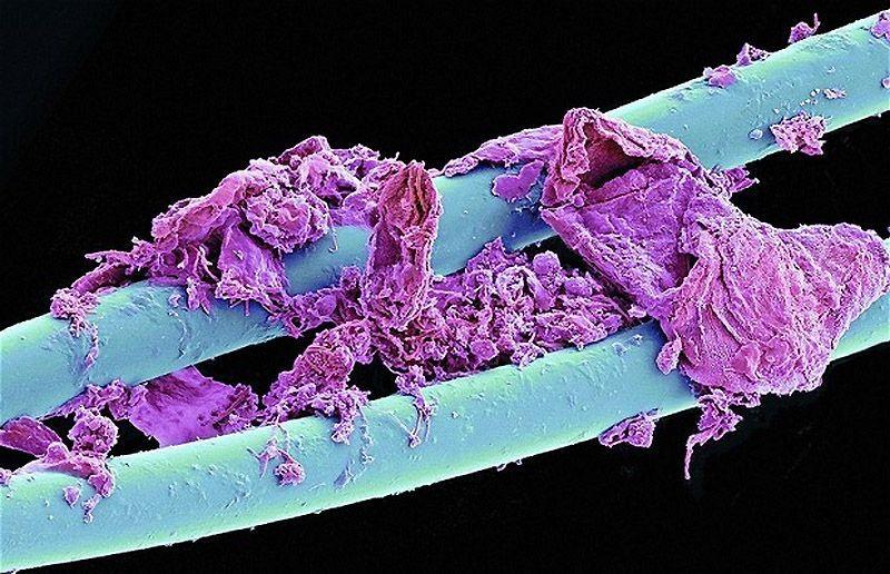 Ризды крупным планом в сперме и с предметами фото 11 фотография