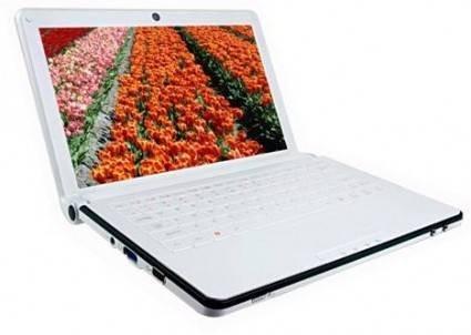 Портативный компьютер ECS G101L Netbook