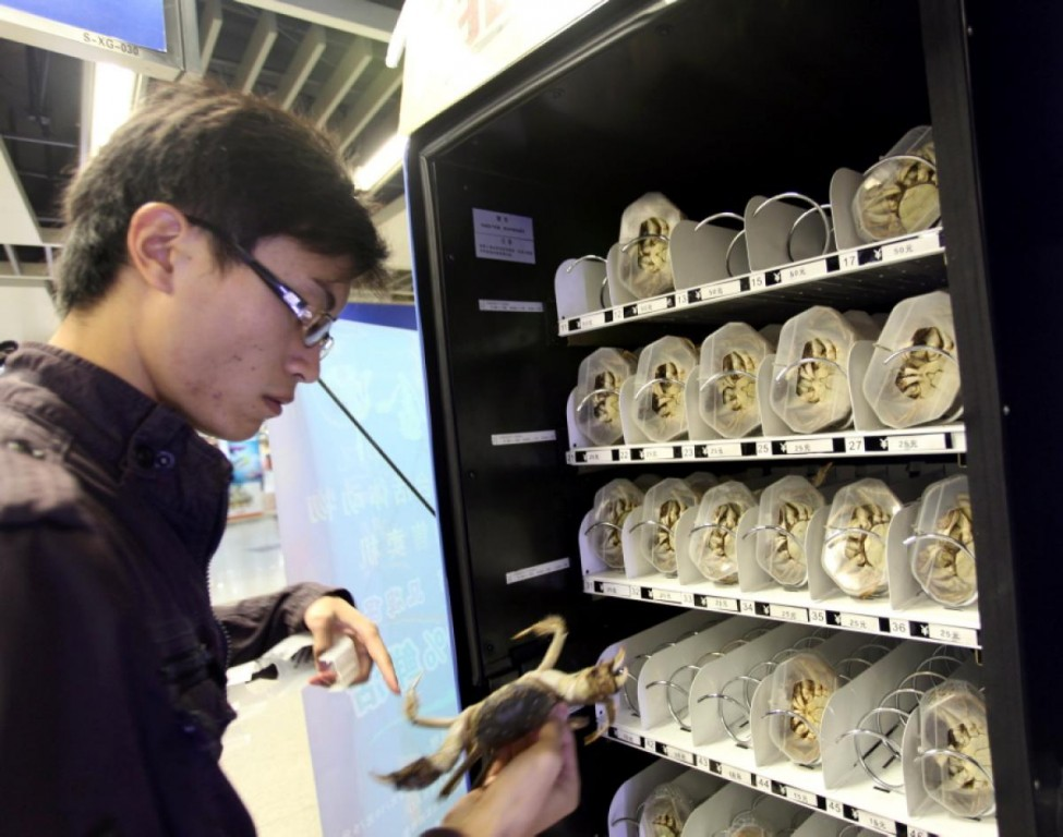 Игровой автомат Ракушки онлайн - CasinoRating su