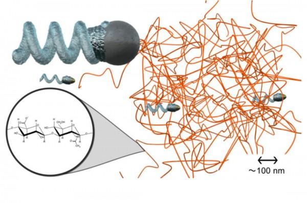 Нанороботы будут использовать винт в качестве двигателя