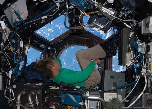 Планктон в открытом космосе: на внешней обшивке МКС нашли следы жизни