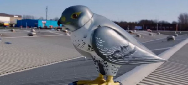Роботизированная птица охраняет Сиднейский оперный театр