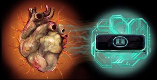 Американские ученые создали «сердце на микрочипе» для испытания медикаментов