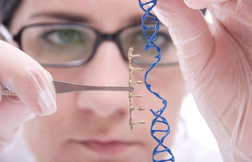 Американские ученые будут редактировать человеческий геном
