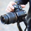 Фотокамера от Nikon получит изогнутый сенсор