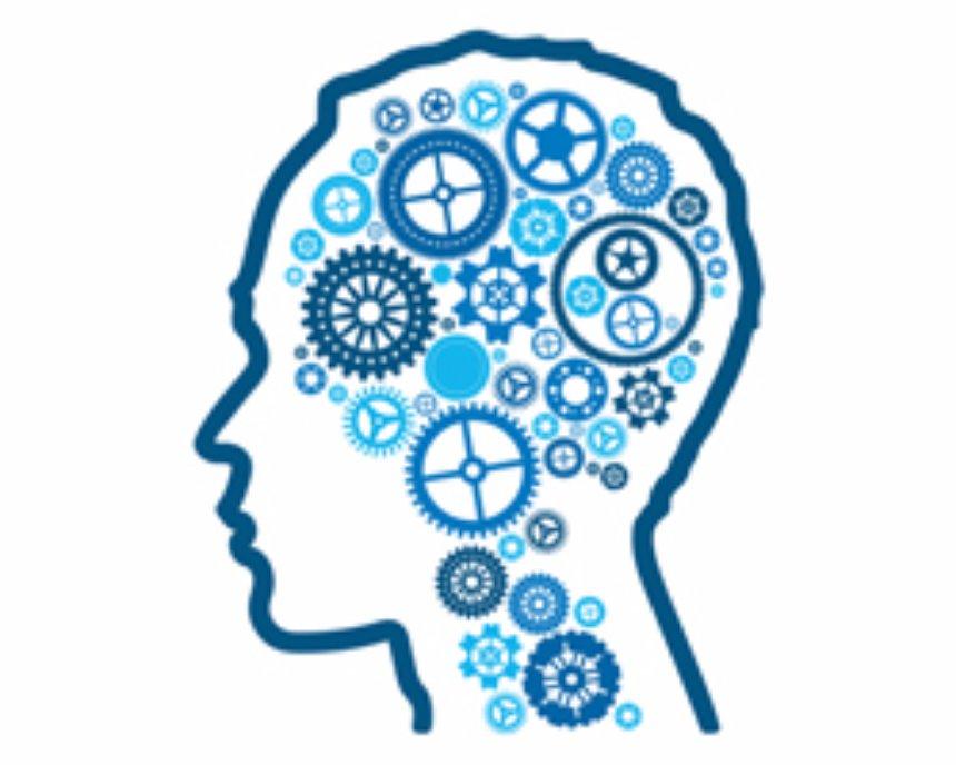 Ученые продвинулись в изучении человеческой памяти