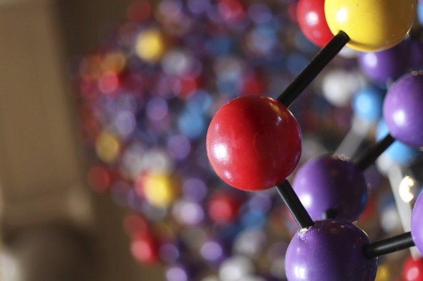 Компания IBM начала изучение микроорганизмов, обитающих в человеческом теле