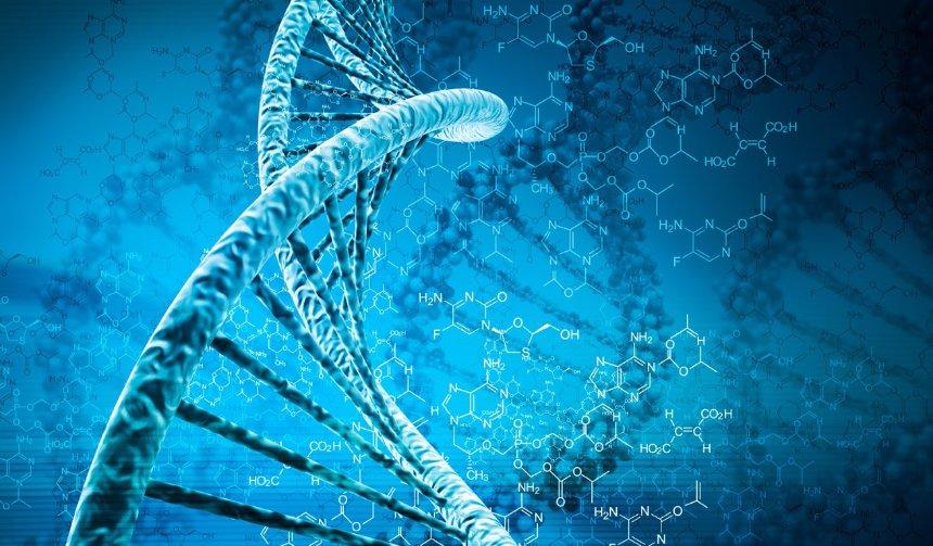 Ученых волнует загадка темного ДНК