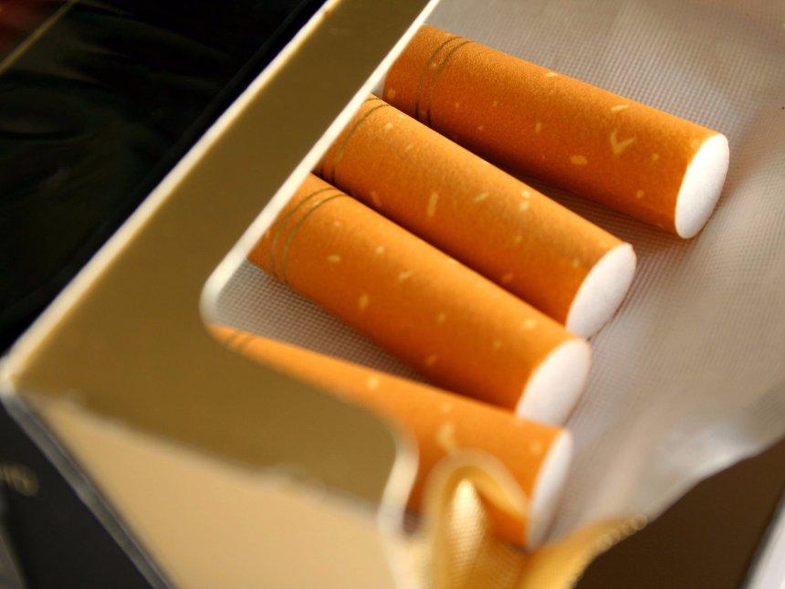 Асфальт будут делать из сигаретных фильтров
