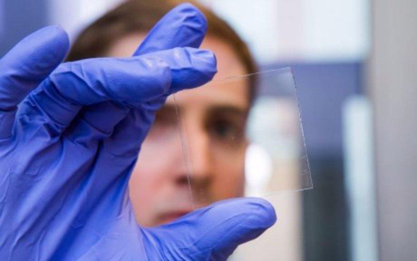 Принстонские ученые создали самотонирующиеся окна