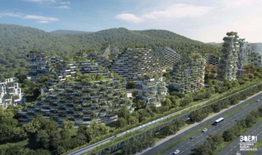 Китайцы разработали проект лесного дома