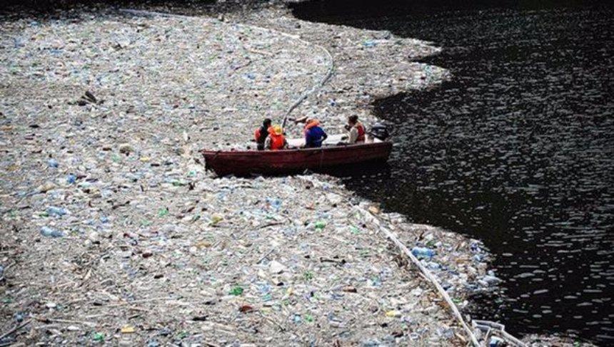 В Англии нашли уникальный способ очистки моря от пластика