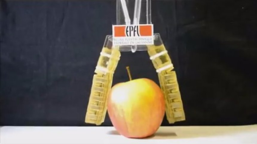 Ученые разработали съедобного робота