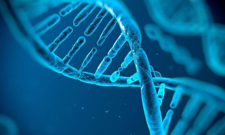 У ученых получилось отредактировать ген живого человека