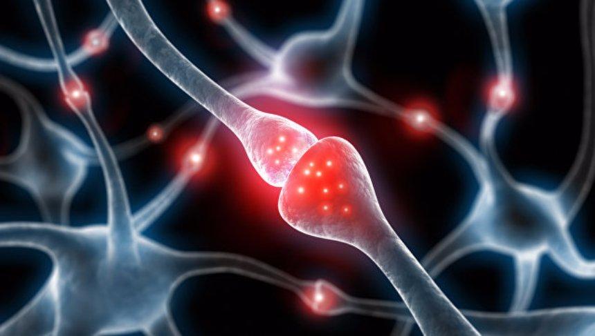 Ученые выяснили, почему неприятные воспоминания долго держатся в памяти