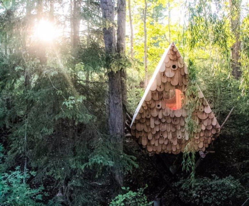В Канаде построили скворечник, который хорош и для птиц, и для людей