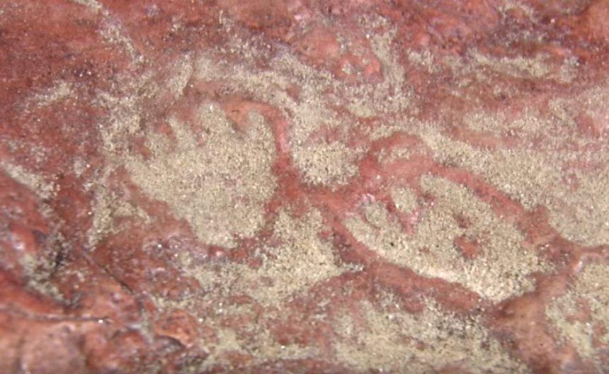 Ученые нашли следы динозавров на заднем дворе НАСА