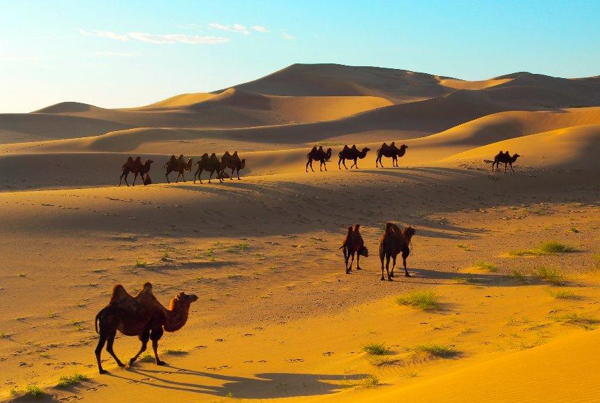 Воду из воздуха можно будет добывать в пустыне