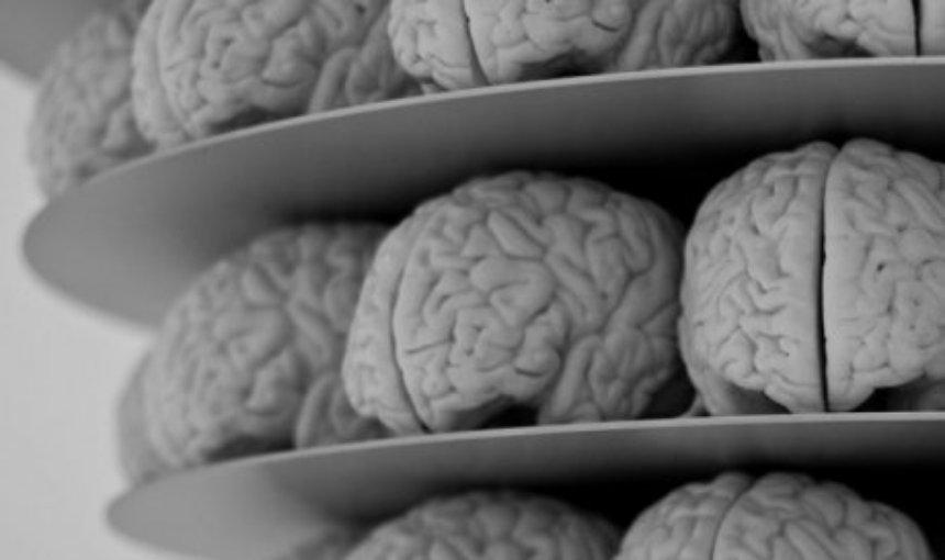 Ученые создали алгоритм симуляции человеческого мозга