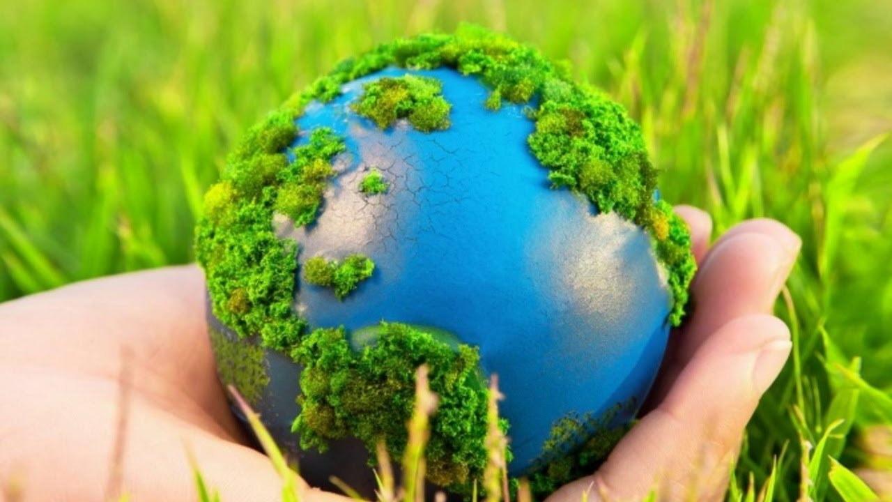 Компания, которая поможет вам в оформлении инженерно-экологической документации