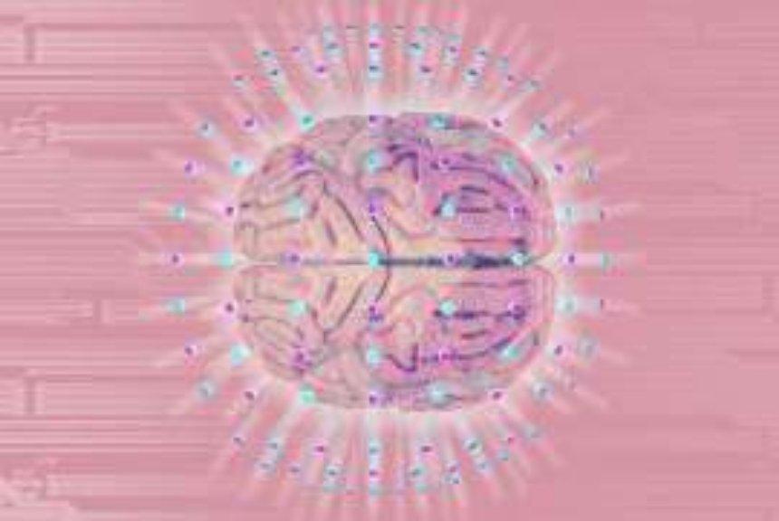 Ученые пытаются выяснить, почему человеческий мозг такой большой