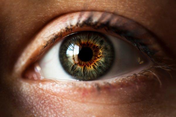 В США разрешили применение гибкой искусственной радужки глаз
