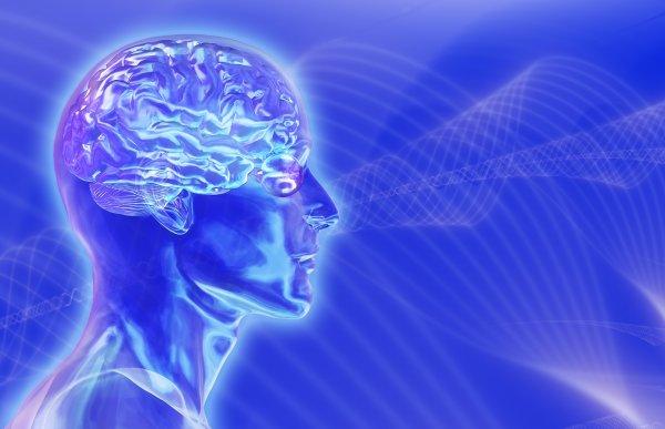 Ученые нашли в мозге человека стимулирующие память волны
