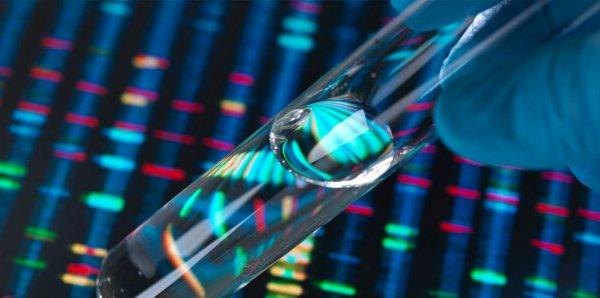 Российские ученые будут находить малейшие отличия в ДНК с помощью «солнечных зайчиков»