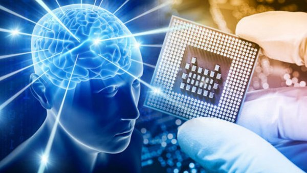 Ученые: Уровень человеческого интеллекта резко снизился