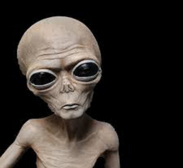 Эксперты: Инопланетяне существуют, но выглядят не так, как принято считать