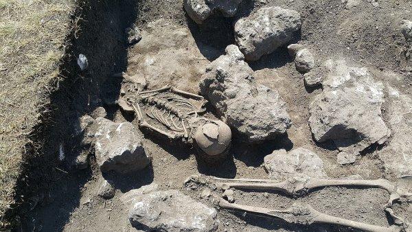 Ученые Крыма выяснили, что древние греки поедали собак
