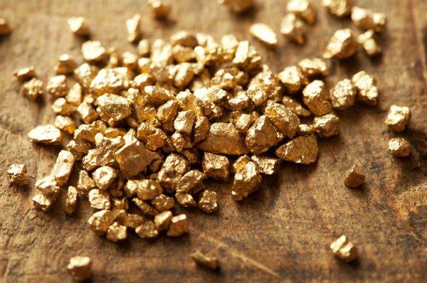 Томские геологи исследуют связь золота и древних вулканов