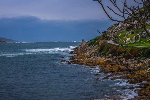 Экологическую катастрофу на Балтийском море предсказали учёные